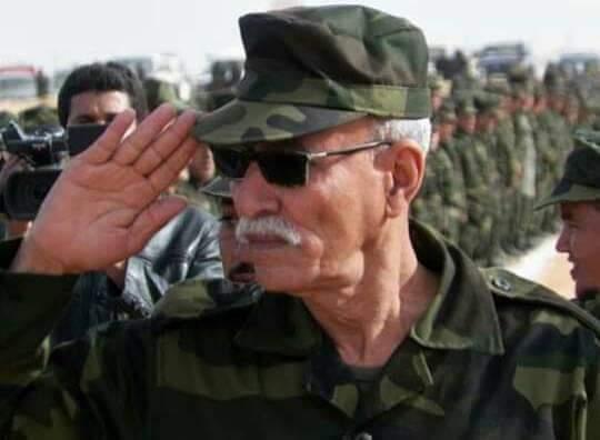 El rol del Frente Polisario y la RASD en la seguridad del Sahel y África Occidental.