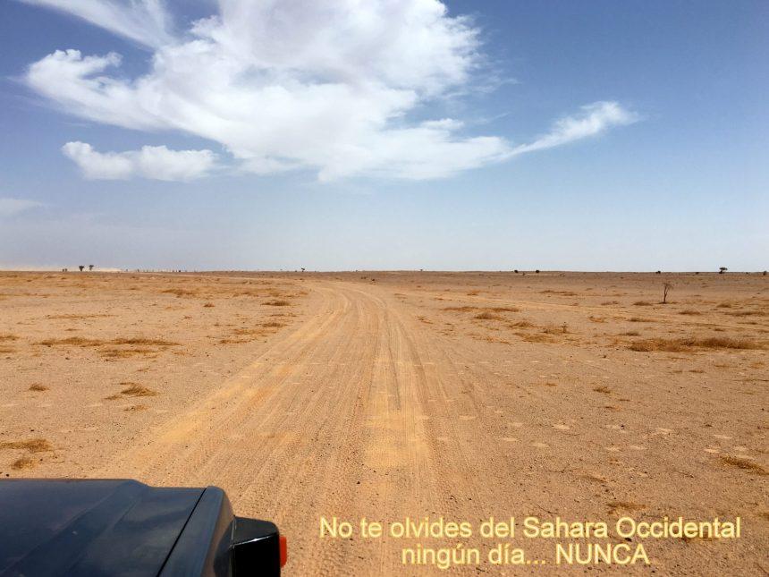La Actualidad Saharaui: 16 de septiembre de 2020 🇪🇭