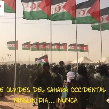 ¡ÚLTIMAS noticias – Sahara Occidental! | 15 de octubre de 2020
