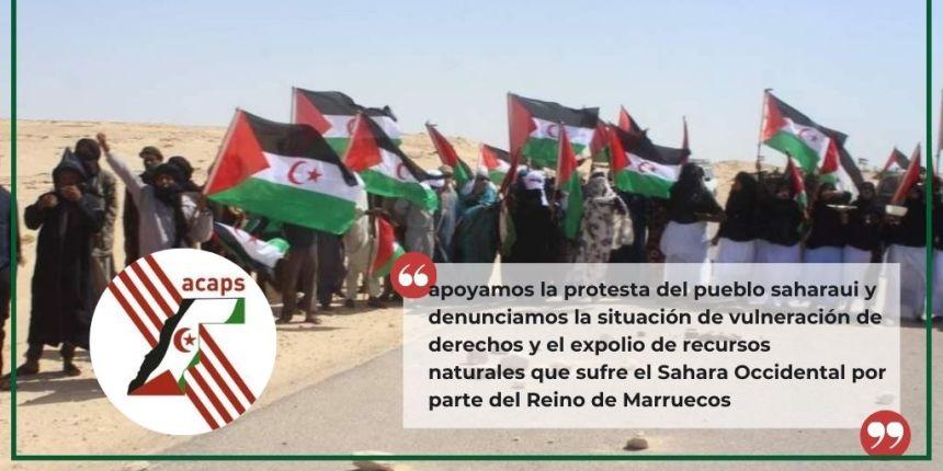 Apoyan desde Cataluña las protestas de Guerguerat y exigen a la ONU asumir sus responsabilidades en el Sahara Occidental   Sahara Press Service
