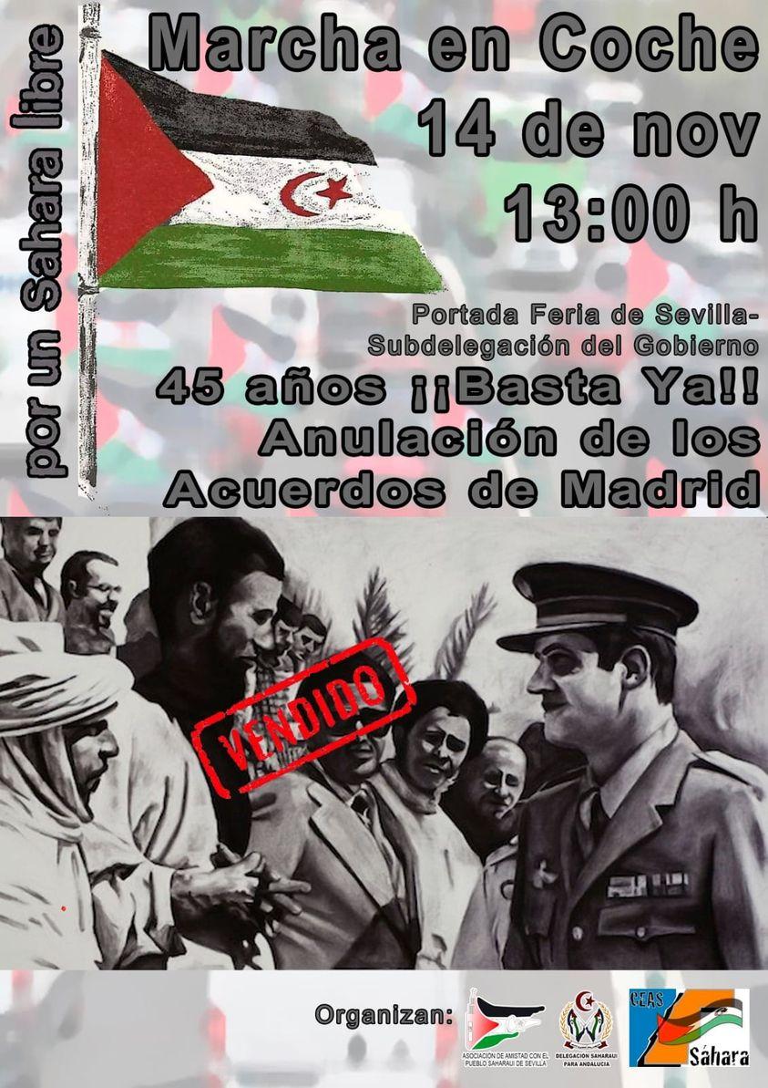 Sahara Sevilla Aapss: 14-N MARCHA EN COCHE por UN SAHARA LIBRE