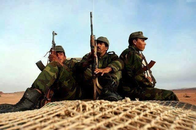 Defensa saharaui mantiene el estado de máxima alerta de combate para cualquier intervención urgente