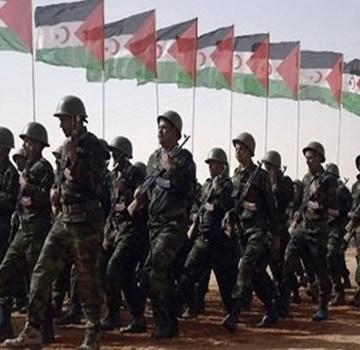 Agresión marroquí en El-Guerguerat: miles de voluntarios se unen al ELPS | Sahara Press Service