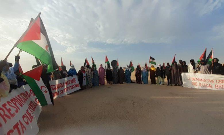 IU solicita la comparecencia del Frente Polisario en la comisión de Exteriores de la Eurocámara para analizar la situación en Guerguerat – Izquierda Unida