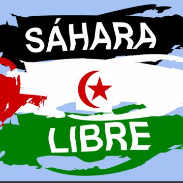 La Actualidad Saharaui: 22 de noviembre de 2020 🇪🇭