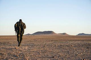 ✍🏼 La incoherencia de Marruecos; oculta y niega que exista una guerra pero su diplomacia gira en torno a ella