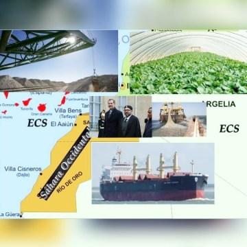 INVESTIGACIÓN | Lista de empresas que expolian el Sáhara Occidental