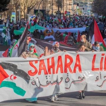 Eurodiputados piden a la Comisión Europea que condene la escalada de la represión contra civiles saharauis y suspenda el acuerdo comercial UE-Marruecos