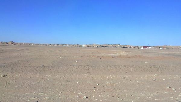 Sáhara Occidental | Los niños y niñas que no pueden volver a casa – El Salto – @MaiderSaralegi