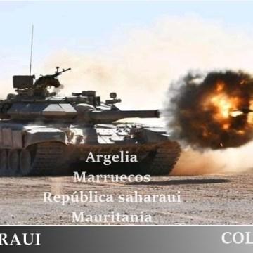 Defensa y Fuerzas Armadas en el Magreb, por Jorge Alejandro Suárez Saponaro / ECSaharaui