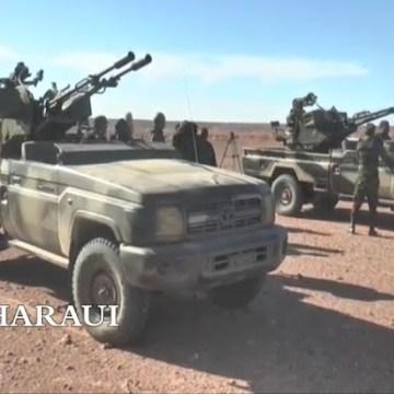 GUERRA EN EL SAHARA | Parte de guerra Nº174