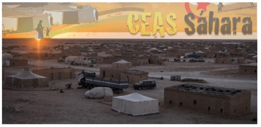 »La pandemia influyó negativamente en los proyectos de solidaridad con el pueblo saharaui»