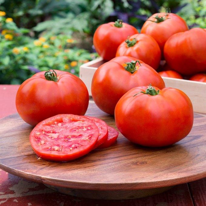 Kandungan Gizi dan Manfaat Tomat