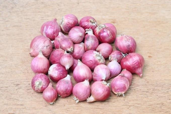 kandungan dan manfaat bawang merah