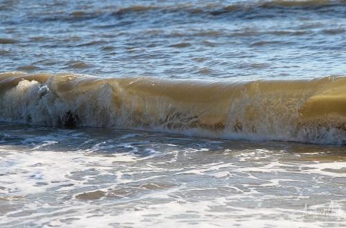 die Welle….