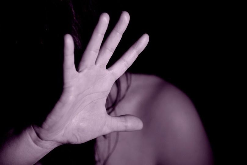 La xifra fosca de la violència domèstica als Estats Units