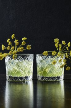 Fennel_Infusion_0987
