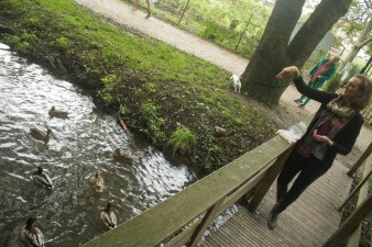 Les canards et Katy