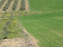 dry-soil-marks-the-boundaries