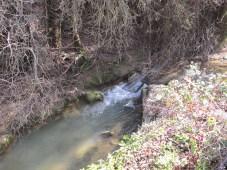 the-2nd-bridge-looking-upstream