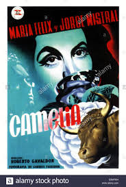 camelia 2