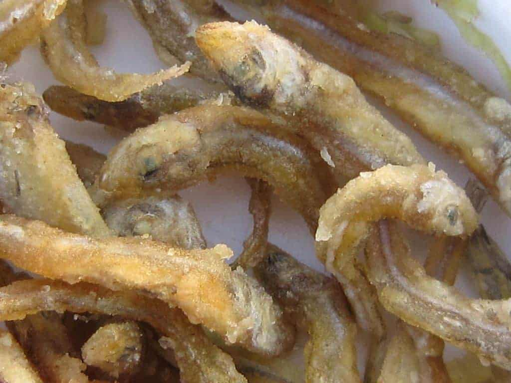 Tiny fried fish snack on Lake Kariba cruise, Zimbabwe (2012-04)