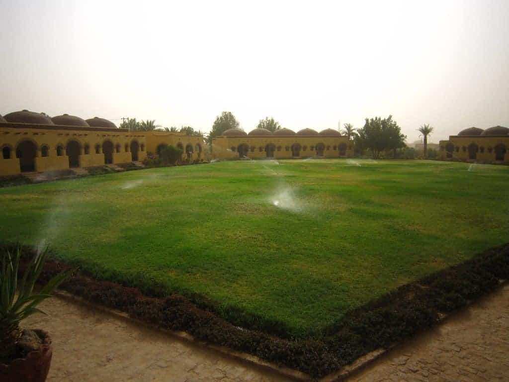 Green lawn at the Nubia Guesthouse, Karima, Sudan (2012-07)
