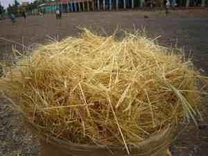 Tef bag, Axum, Ethiopia (2012-06)