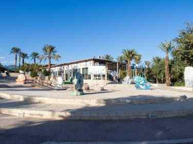 Sculpture outside Eilat Art Gallery, Israel (2016-12-31)