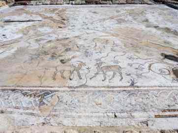 Ibex mosaic, Caesarea, Israel (2017-02-17)