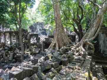 Wild temple puzzle Beng Mealea, Angkor, Siem Reap, Cambodia (2017-04-16)