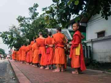 Young monks at the Buddhist Alms Giving, Luang Prabang, Laos (2017-08)