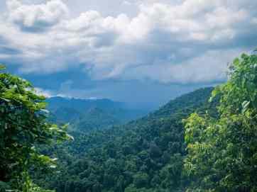 Rain strom over the jungle in Phong Nha-Ke Bang National Park, Vietnam (2017-06)