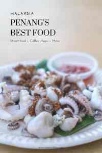 Penang food (and drink) culture is a reflection of the island's people: a mix of flavors and traditions from around the World. Chinese, Indian, European, and Middle Eastern culinary concepts have blended with local Malay recipes and ingredients. Click and read more about my favorite foods and coffee shops in Penang, Malaysia. #streetfood #coffeeshops #foodtravel