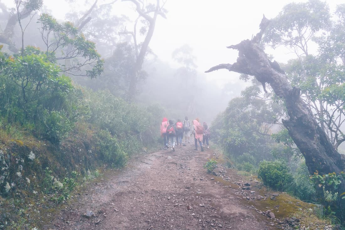Climbing Mt. Ramelau on a rainy morning, East Timor
