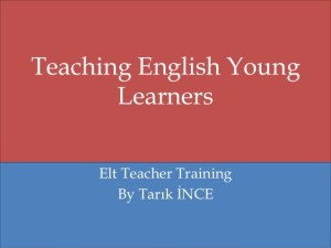 Four Aims of Teaching English at School Level
