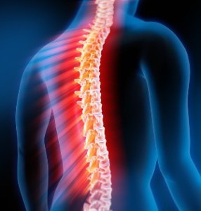What Is Transverse Myelitis;Pathology,Diagnosis And Treatment