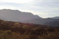 Topanga Canyon Trail