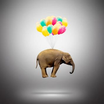Burden of elephant supported by balloons