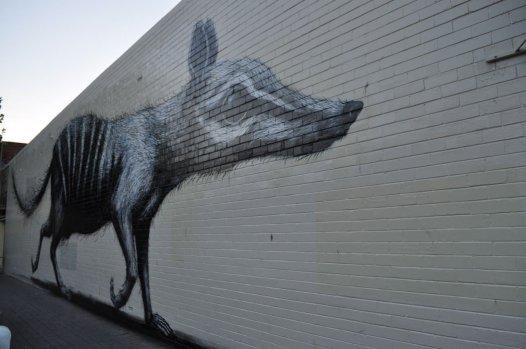 Fremantle graffiti