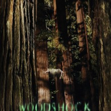 Woodshock poster (A24 Films)