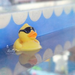 Rebel Duck web
