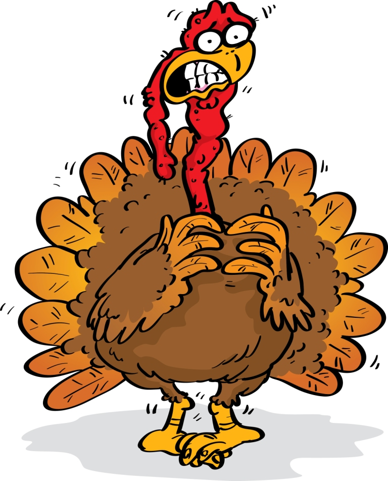 Just In Time For Turkey Day The Lowdown On Bird Flu