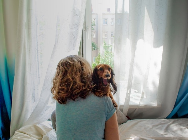 Tips To Help Your Dog Get Over Separation Anxiety