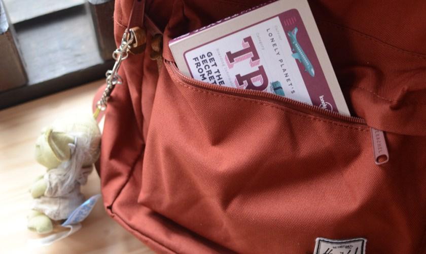 LonelyPlanet-Bag