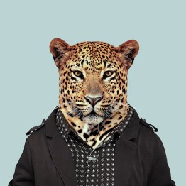 zoo-portraits-3