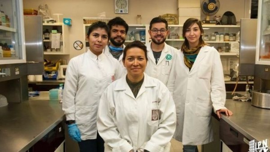 Consiguen cura para pacientes con Papiloma Humano (VPH)
