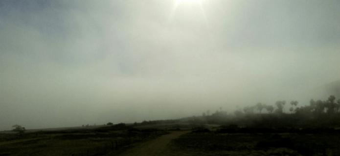 niebla-sanpedrito-bcs-002