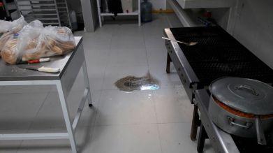 rebosamiento de aguas negras en cocina (1)