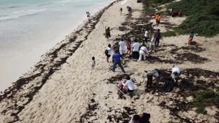 playas 6